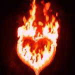 Feuershow Fire in Love